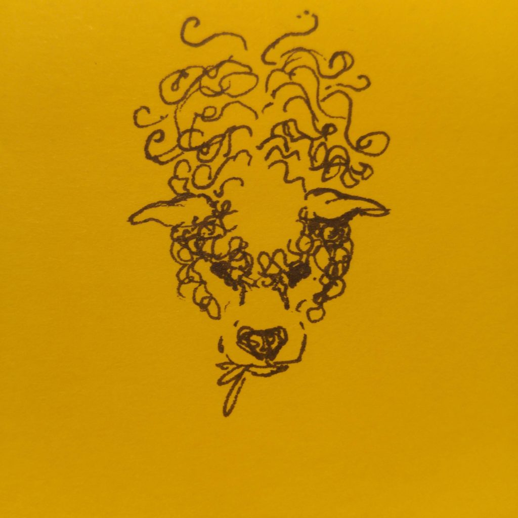 post-it not pen sketch of grazing sheep