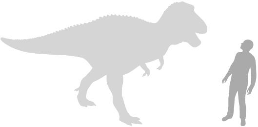 large therapod scale silhouette next to human