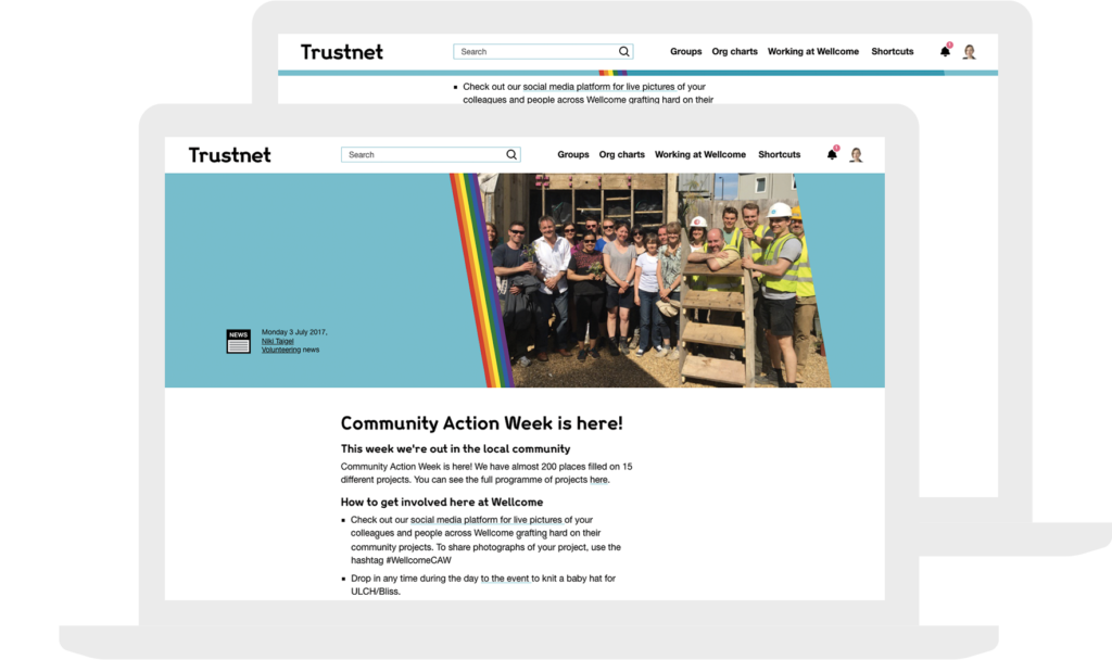 responsive trustnet CSS Pride rainbow